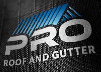 Pro Roof and Gutter